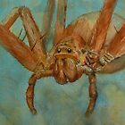 Fido-Hawaiian Cane Spider by Pete Janes