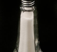 Antique Salt shaker by Jeffrey  Sinnock