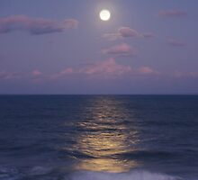 A moonlit Sawtell Headland by kristy m