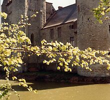 The Moat - Laarne Castle - Belgium by Gilberte