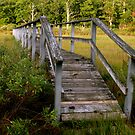 Marsh Bridge/ Wooden Walkway by raneangel