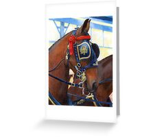 Cleveland Bay Horse In Harness Portrait Greeting Card