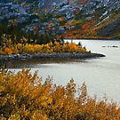 Lake Sabrina Fall by Nolan Nitschke