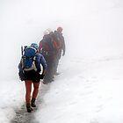 Glacier trekking by Hadleigh Thompson