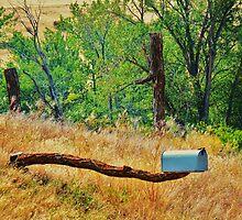An Idaho Mailbox by trueblvr