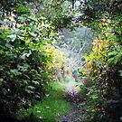 The Secret Garden by ReveLinWonder