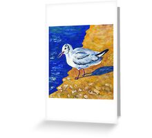 Seagull at the Baltic Sea Greeting Card