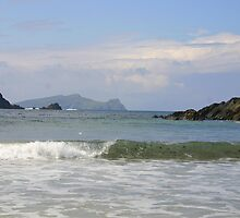 An Fear Marbh by Fiona Crowe