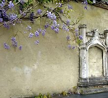 Wisteria at Montsalvat #2 by Bevellee