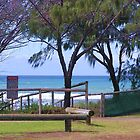 Broadbeach Beach Life Saving Club Park by Virginia McGowan