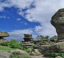 Brimham Rocks 6 by WatscapePhoto