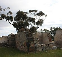 Old House Ruins and Tree by Emma Delladio