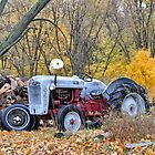 An Old Ford Tractor in the Fall by mltrue