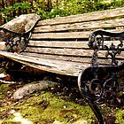 Old Bench in Cemetery by brooke1429