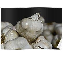 Garlic Festival Poster