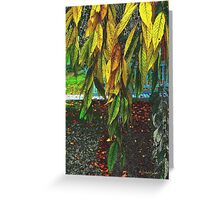 Coat of Many Colors Greeting Card