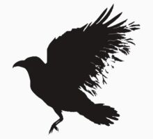 Crow - dead crow by Sandra O'Connor