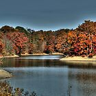 Alum Creek  by Kate Adams