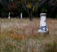 Wright Cemetery by debsrockine
