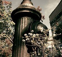 Hydrant by Shannon Holm