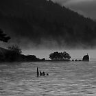 Misty Morning on the Gorge by Kerri Gallagher