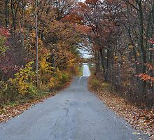 Scenic Drive in the Country by mltrue