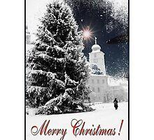Christmas tree in Down Town of Sibiu, Romania by Adrian Bud