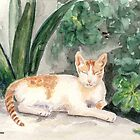 Cat on Crete by Caroline  Lembke