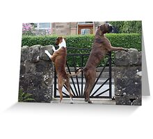 Guard Dogs Greeting Card