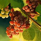 Grape vine by Victoria  _Ts