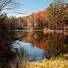 Autumn's Mirror by John Rinaldi