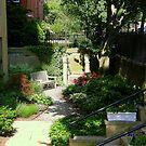 Backyard Garden City Style by Len Bomba