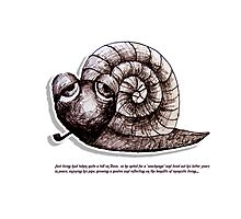 Little Profiles Chilled Snail Photographic Print
