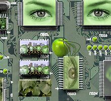 Motherboard by Lawrence Alfred Powell