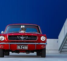 Mustang - OLD 650 by Tony Rabbitte