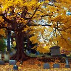 Mt Hope Cemetery by Jeff Palm Photography