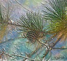 Lone Pine by vigor