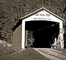 Parke County Bridge Series - Harry Evans Bridge 1908 by Scott Denny