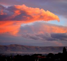 Phoenix over Yakima, Wa by Hiroshi  Maeshiro
