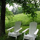 Set Back in an AdiRhondack Chair-1 by JeffeeArt4u