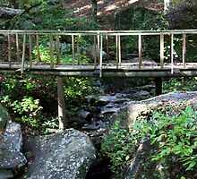 Little Bridge Over Stream by Ginger  Barritt