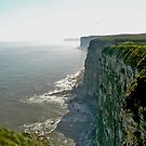 Bempton Cliffs by Trevor Kersley