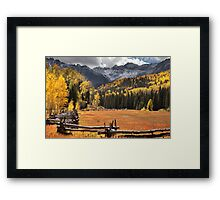 Colorful Meadow Framed Print