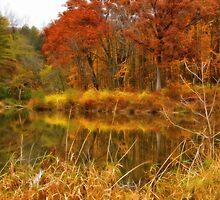 Sterling Pond by Lyle Hatch