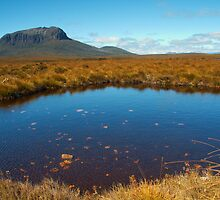 Lake Windermere to New Pelion, Overland Track, Tasmania by Roger Barnes