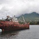 """Shipwreck"" by mattmaples"
