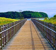 Boardwalk by DeerPhotoArts