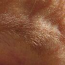 eye brow by yvesrossetti