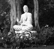 the Buddha - Pune , India by AvadheshMalik