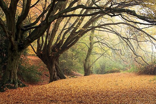 Autumn Spirit by SeeOneSoul